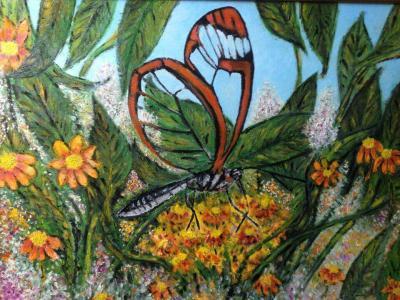 Greta Otto ou papillon aux ailes transparentes