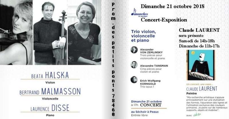 Concert-Expostion avec Claude Laurent (78)