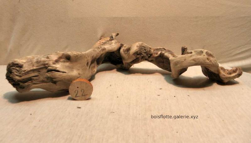 Bois flotté n°22 - 45cm