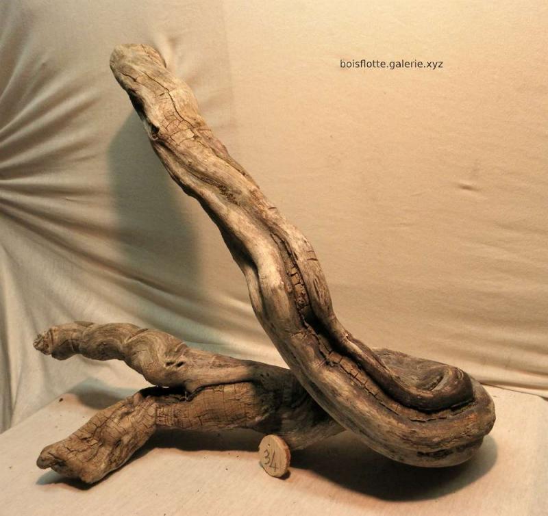 Bois flotté n° 34 - 57cm (réservé)