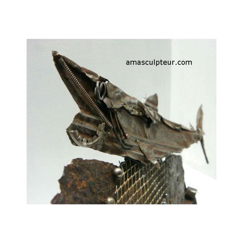 Sculpture Requin par Ama