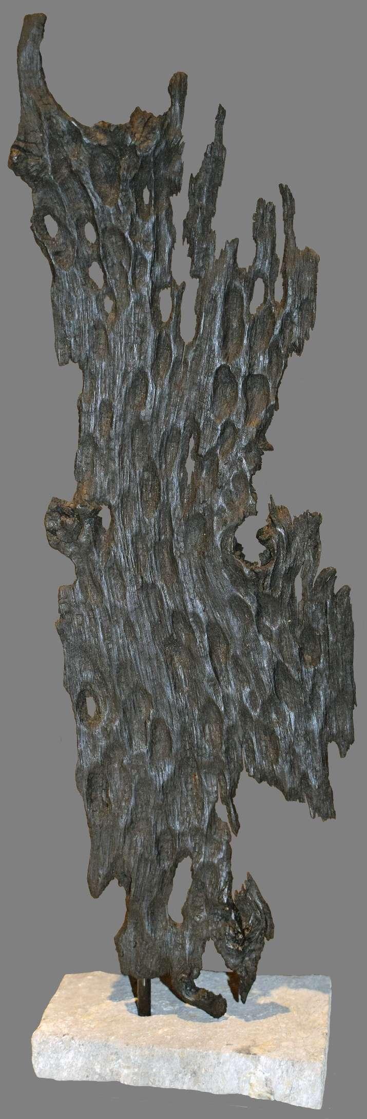 """""""Ombre wayang"""" par Liger pêcheur de bois"""