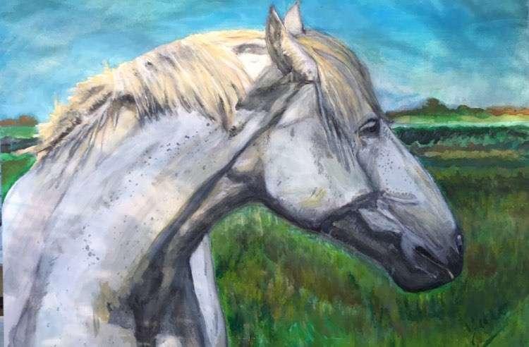 cheval blanc par Jû Artiste