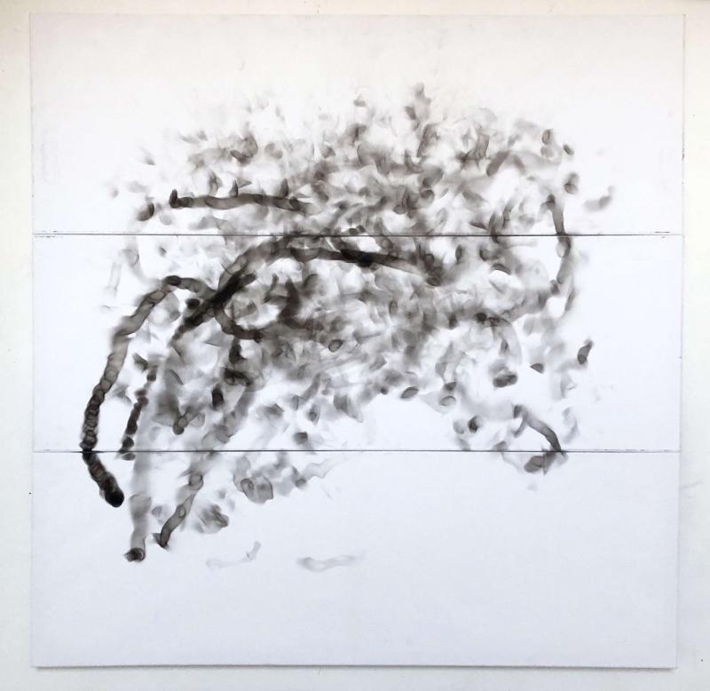 Un oiseau dans le feu par Juliette Duchemin